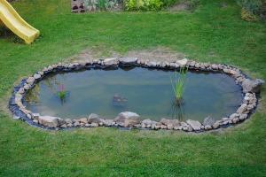 pond-84855_1280